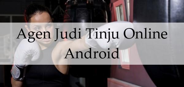 Agen Judi Tinju Online Android